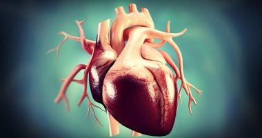 دراسة: إجراء جراحة القلب المفتوح بعد الظهر يرفع نسبة نجاحها بمعدل 50%