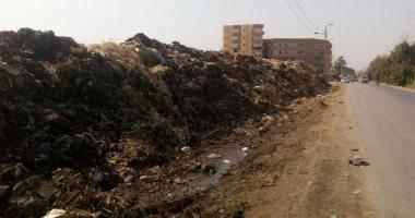 cd872cc3843f9 بالصور ..أهالى زفتى يشكون تراكم القمامة في الشوارع ومخاوف من انتشار الأمراض