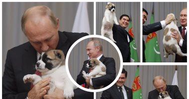"""""""بوتين بيحب الكلاب""""..الرئيس الروسى  يُقبل كلبا من رئيس تركمانستان"""
