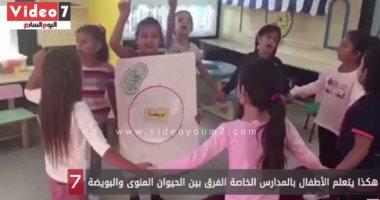 فيديو طريف.. هكذا يتعلم أطفال المدارس الخاصة الفرق بين الحيوان المنوى والبويضة
