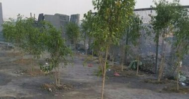 """محافظة الجيزة تستجيب لشكاوى """"صحافة المواطن"""" وترفع القمامة بالبدرشين"""