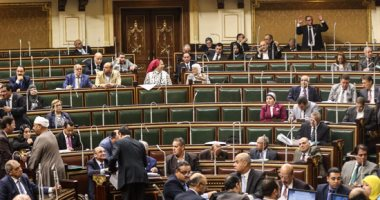 البرلمان يوافق على المادة الخاصة بحظر استيراد الطائرات اللاسلكية دون موافقة أمنية