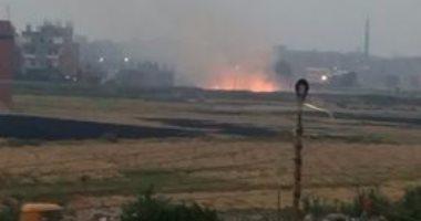 وزير البيئة: الفلاحون استغلوا مباراة مصر والكونغو لحرق قش الأرز