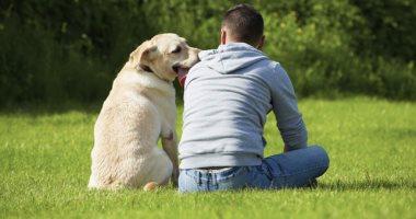 هل تفضيل صداقة الحيوانات عن البشر نوع من المرض النفسى؟