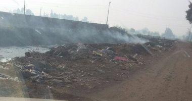 قارئ يطالب برصف وإنارة ورفع القمامة فى طريق مصرف طوخ بالغربية
