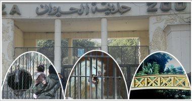 اليوم.. فتح حديقتى الحيوان والأورمان مجاناً احتفالاً بالعيد القومى للجيزة