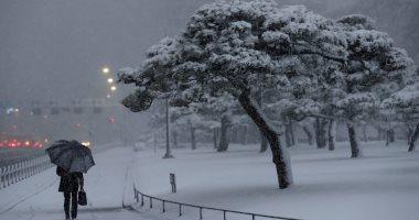 مصرع 15 شخصا وإصابه 222 آخرين بسبب تساقط الثلوج فى اليابان