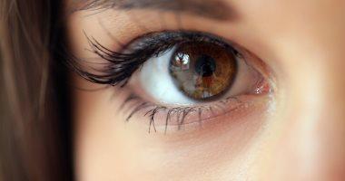 اعرف جسمك.. العين.. كاميرا بـ13 وظيفة تتحكم فى رؤيتك للحياة