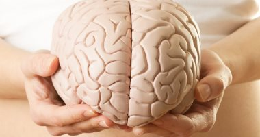 اعرف جسمك.. كيف يتحكم جانبا المخ فى كل تفاصيل حياتك