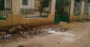 مطالب باستكمال رصف شارع الوحدة الصحية بمركز المنزلة فى الدقهلية