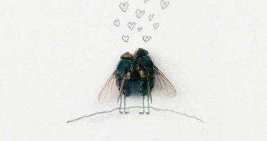 """الفنون جنون.. ذباب ميت يبرز حياة مليئة بالإثارة.. الرسم بالذباب آخر الافتكاسات الغريبة.. والجدل يسيطر على الفيس بوك.. وساخرون :""""حتى الدبان ارتبط وإحنا لأ"""".. وآخرون :""""خياله واسع وعمل مجهود"""""""
