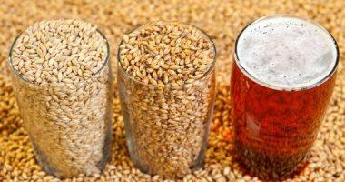 اضرار شراب الشعير على الصحة