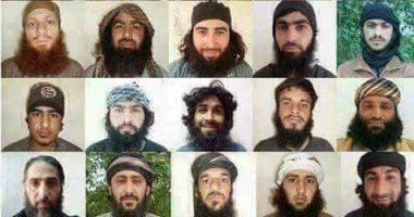 """المبعوث الأمريكي لسوريا: """"داعش"""" لديها نحو 20 ألف عنصر بالعراق وسوريا"""
