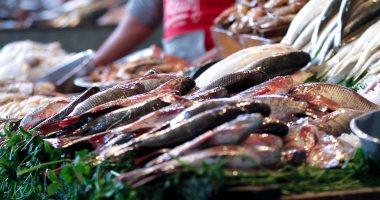 استقرار أسعار الأسماك بسوق العبور.. والبلطي بـ23 جنيها