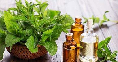 10 أسباب تجعل النعناع أفضل الأعشاب لصحتك