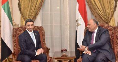 وزير الخارجية: التدخلات التركية والإيرانية تعقد المشهد الداخلى السورى