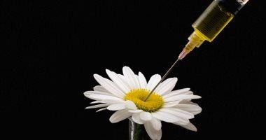 ابتكار حقنة تحتوى على ستة أنواع مختلفة من المواد المسببة للحساسية