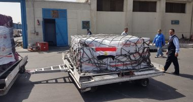 تنفيذ عاجل لتوجيهات الرئيس.. انطلاق قافلة مساعدات مصرية لشعب اليمن (صور)