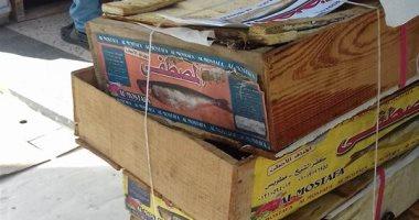 صور.. ضبط 300 كيلو أسماك مملحة غير صالحة للاستخدام الآدمى بكفر الشيخ