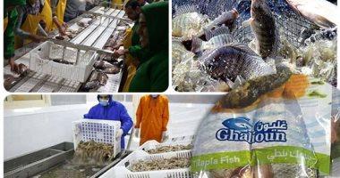 محافظ كفر الشيخ: زيادة المطروح من مزرعة غليون للأسماك إلى 10 أطنان يومياً