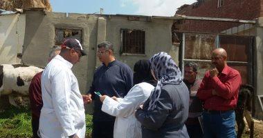 نقابة البيطريين: 8 أطباء فقط يشرفون على ذبح 90 ألف رأس سنويا بمجزر أبو سمبل