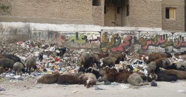 قارئ يشكو من تراكم القمامة أمام سلم محطة مترو عزبة النخل
