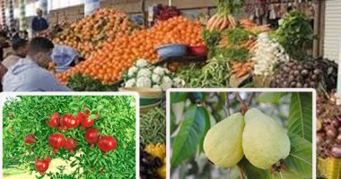 أسعار الفاكهة بسوق العبور اليوم الخميس 22–11-2018