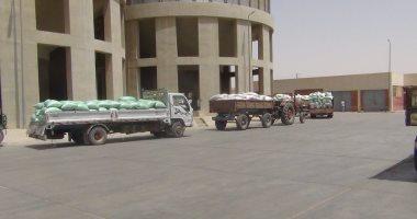 توريد 269 ألف طن قمح حتى الآن لشون وصوامع محافظة البحيرة