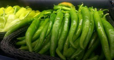 5 توصيات لمزارعى محاصيل الفلفل والباذنجان الصيفية لزيادة الإنتاج