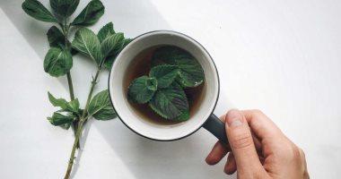 فوائد شرب النعناع