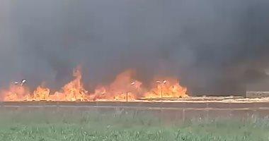 """السيطرة على حريق بـ""""هيش"""" بجوار مضرب الأرز فى كفر الشيخ"""