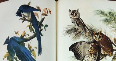 """بعد بيعه بـ9.65 مليون دولار.. قصة الكتاب الأغلى فى العالم """"طيور أمريكا"""""""