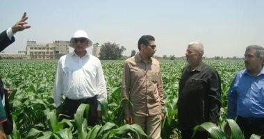 """صور .. """"الزراعة"""": حملات على الزراعات الصيفية لزيادة الإنتاج ومكافحة الأفات بالمحافظات"""