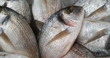 سمك قاروص