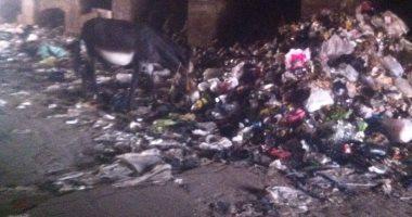 قارئ يشكو من انتشار القمامة فى شوراع مدينة الخصوص