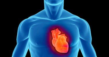 اعرف جسمك .. كيف يعمل نظام الدورة الدموية؟