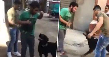 فيديو.. شاب يروع المواطنين فى شارع العشرين وكلبه يعقر أحد المارة