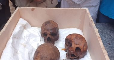 محافظ الإسكندرية: نقل المومياوات إلى المتحف القومى والتابوت للمتحف الحربى