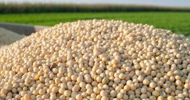 وزراة الزراعة الأمريكية: المخزون العالمى لبذرة الصويا بلغ 108.26مليون طن