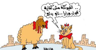 """الخرفان تتنكر فى ثياب القطط للهرب من الجزار فى كاريكاتير  """"اليوم السابع"""""""