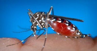 ارتفاع حالات الإصابة بفيروس غرب النيل بفلوريدا الأمريكية لـ33 حالة