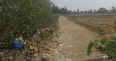 صور.. شكوى من سوء الخدمات والمواصلات بقرية ميت الليث هاشم فى المحلة