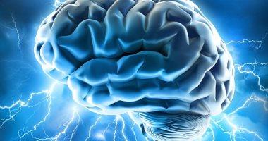 باحثون يطورون شريحة إلكترونية تزرع فى الدماغ للوقاية من نوبات الصرع