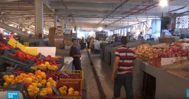 الإسماعيلية تصدر بـ626 مليون دولار خضار وفاكهة للأسواق العربية والأوروبية
