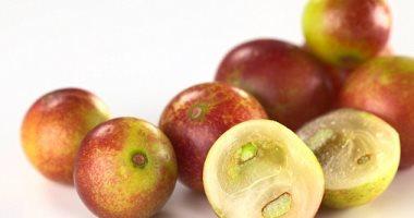فاكهة تساعدك على فقدان الوزن بنسبة 50 تعرف عليها