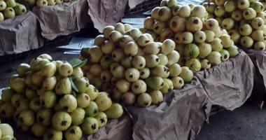 الزراعة: صادرات الرمان والجوافة تتخطى لـ8800 طن وجارى الشحن