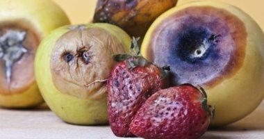 الخضار والفاكهة فيها حتة بايظة أكلها ولا أرميها؟ اعرف رأى الطب