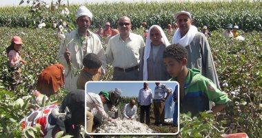 الخدمات الزراعية: لجان مرورية لمتابعة محصولى القطن والذرة لزيادة الإنتاج