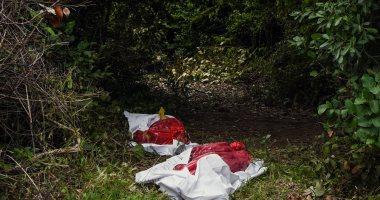 العثور على مقبرة جماعية جديدة تضم 166 جمجمة فى المكسيك