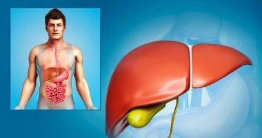 اعرف جسمك.. ما هى وظيفة المرارة وطرق وقايتها من الأمراض ؟